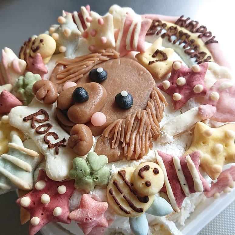 愛犬の誕生日を似顔絵入りケーキでお祝いしてみませんか?